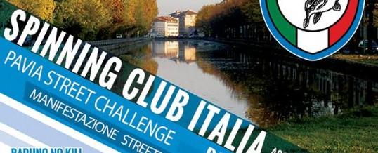 Pavia Street Challenge